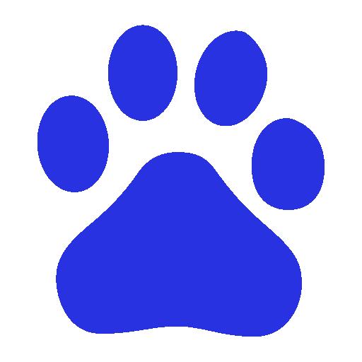 Аккаунт в Baidu: регистрация и основные сервисы